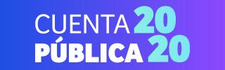 CuentaPublica2020